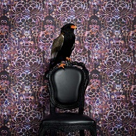 Neo Royal by Marcel Wanders