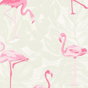 Flamingo Wallpaper, AS Creation Boys & Girls 6 - Studio360 BG359801